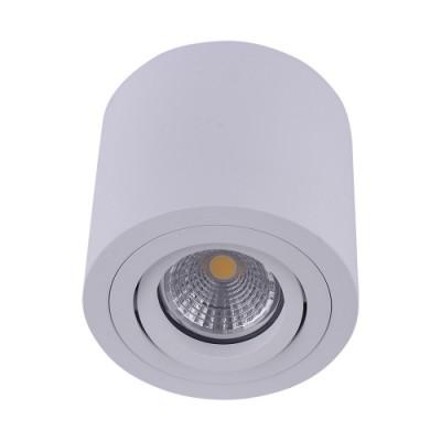 48606 АЛМАН 1ХГУ10/МАКС.50Њ Бело таванска светилка